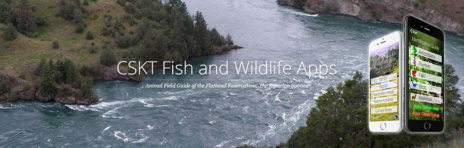 CSKT Fish and Wildlife App